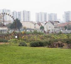 Xavier Remongin - agriculture.gouv.fr.jpg
