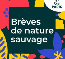 breves de nature ssauvage à Paris - biodiversité urbaine - podcast.jpeg