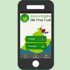application Sauvages de ma rue mobile