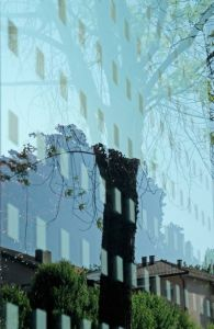 Reflets d'arbres urbains - photographie sans trucage - Patricia-Laguerre (from www.musees.vd.ch)